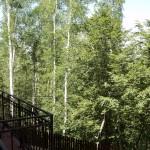 Изглед от тераса